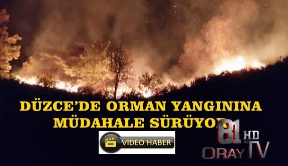 DÜZCE'DE ORMAN YANGININA MÜDAHALE SÜRÜYOR