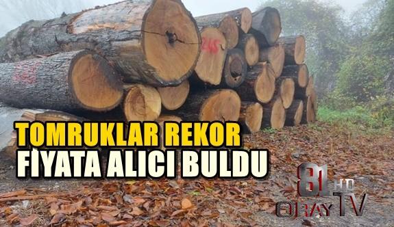 TOMRUKLAR REKOR FİYATA ALICI BULDU