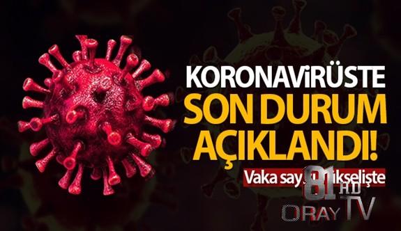 TÜRKİYE'DE SON 24 SAATTE 8.104 KORONAVİRÜS VAKASI TESPİT EDİLDİ