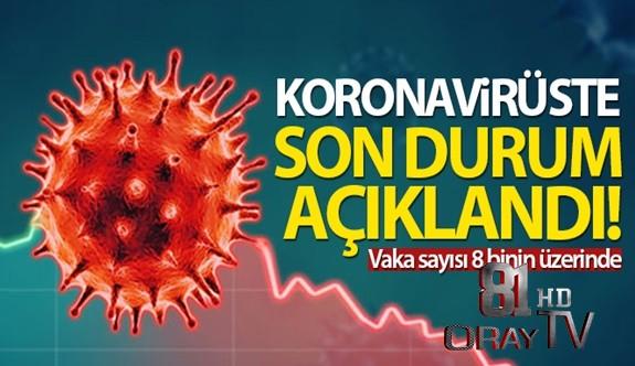 TÜRKİYE'DE SON 24 SAATTE 8.636 KORONAVİRÜS VAKASI TESPİT EDİLDİ