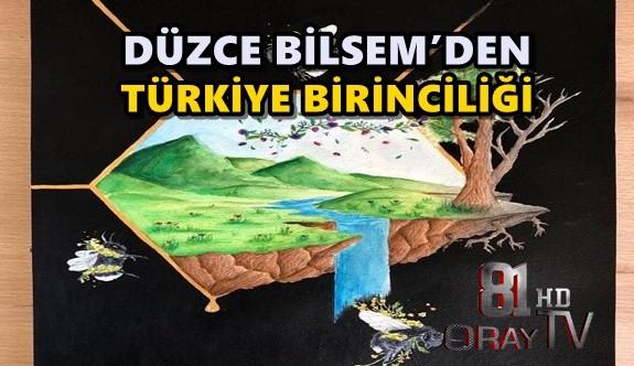 DÜZCE BİLSEM'DEN TÜRKİYE BİRİNCİLİĞİ