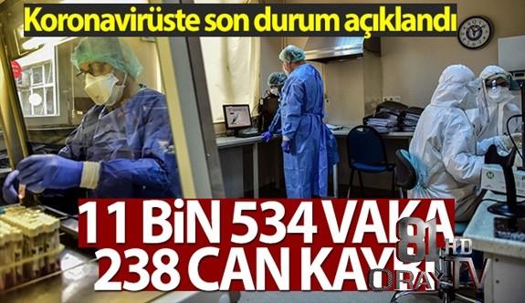 TÜRKİYE'DE SON 24 SAATTE 11.534 KORONAVİRÜS VAKASI TESPİT EDİLDİ