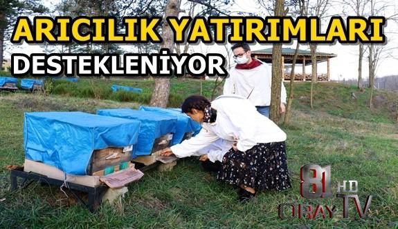 ARICILIK YATIRIMLARI DESTEKLENİYOR