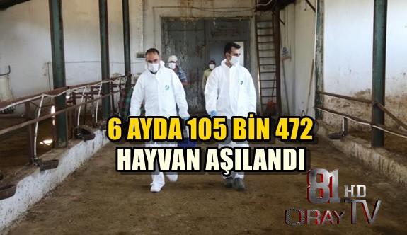 6 AYDA 105 BİN 472 HAYVAN AŞILANDI