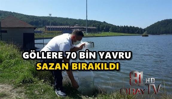 70 BİN  SAZAN BIRAKILDI