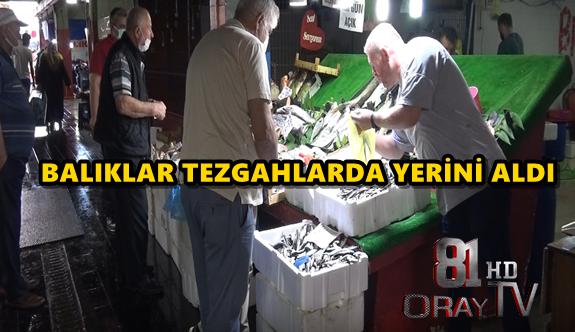 BALIKLAR TEZGAHLARDA YERİNİ ALDI