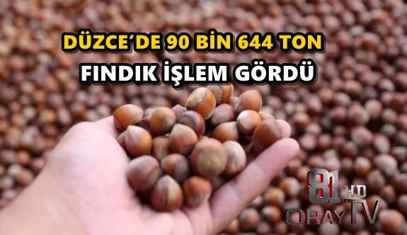 DÜZCE'DE 90 BİN 644 TON FINDIK İŞLEM GÖRDÜ
