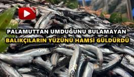 KARADENİZ'DE HAMSİ BOLLUĞU TEZGAHLARA YANSIDI