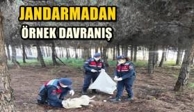 JANDARMADAN ÖRNEK DAVRANIŞ