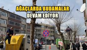 BUDAMALAR DEVAM EDİYOR