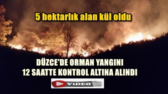 DÜZCE'DE ORMAN YANGINI 12 SAATTE KONTROL ALTINA ALINDI